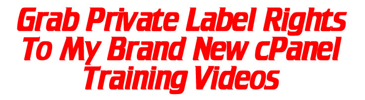 WebMasterBlaster Grab PLR Header Image